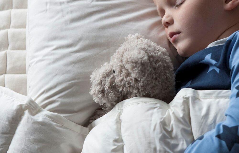 Kvalitets søvn med kapok juniordyne
